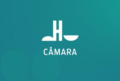 topo_artigo_Camara
