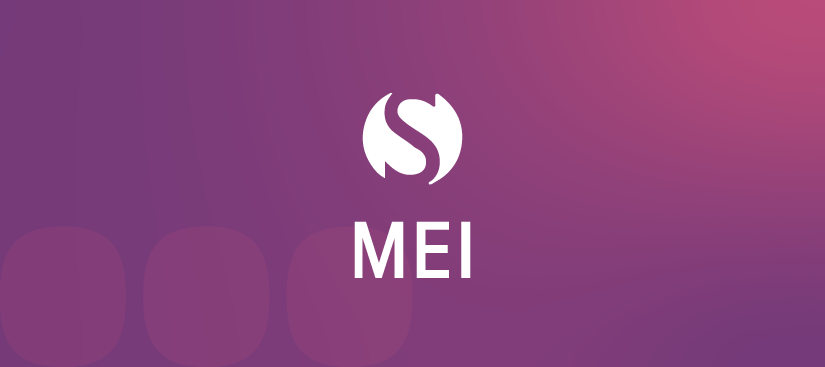 topo_artigo_MEI