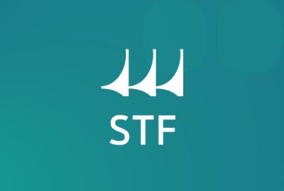 topo_artigo_STF